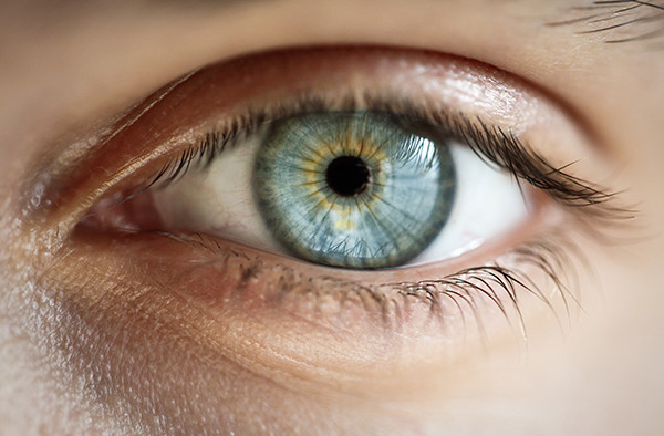 human eyes